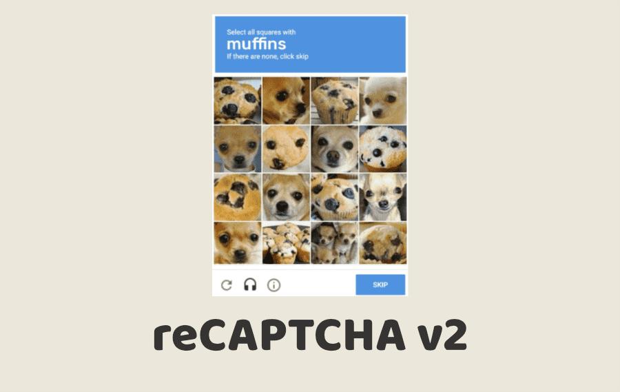 reCAPTCHA v2